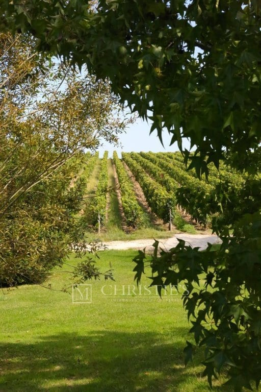 Prestigious vineyard estate near Saint-Emilion